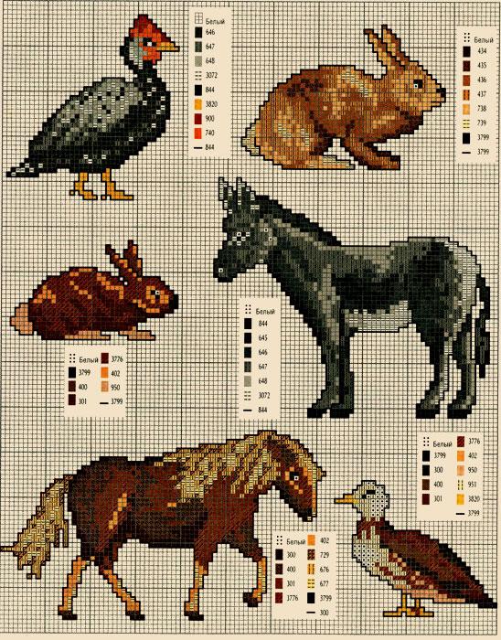 Животные и схемы 27