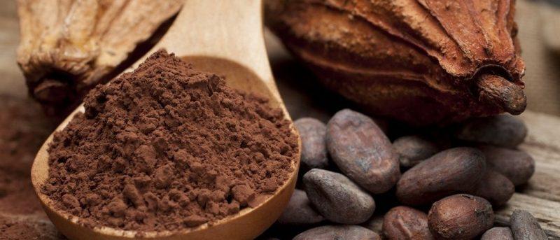 Где используется какао