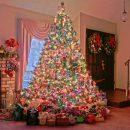 Новогодние ёлки по топовой цене купить онлайн