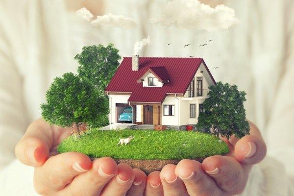 Приватизация дачных и садовых домов в Киеве