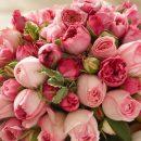 Быстрая доставка красивых букетов цветов в СПб